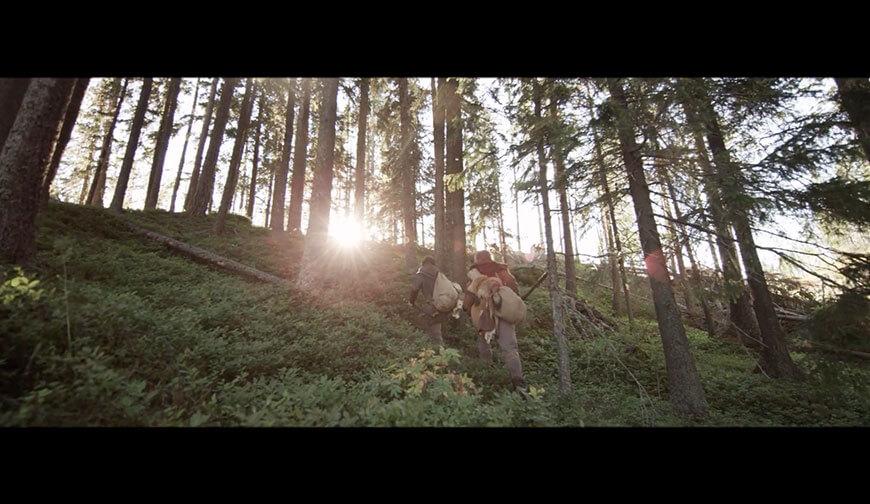 eldsjal-skog